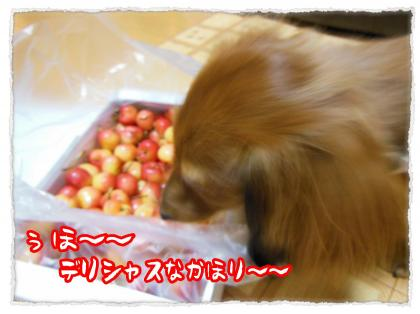 2012_7_20_3_convert_20120720233051.jpg