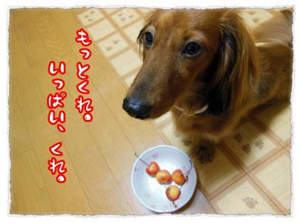 2012_7_20_8_convert_20120720233210.jpg