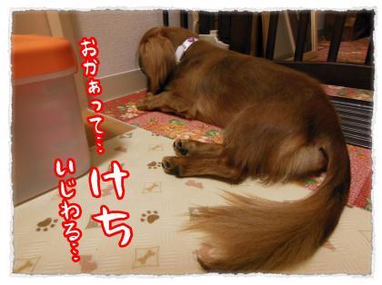 2012_7_20_9_convert_20120720233234.jpg