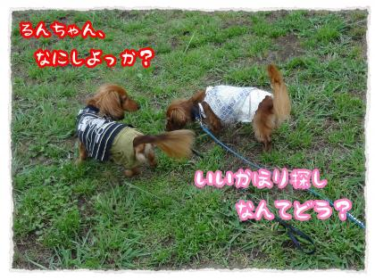 2012_7_22_3_convert_20120722224058.jpg