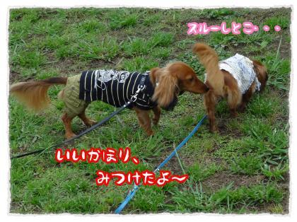 2012_7_22_4_convert_20120722224120.jpg