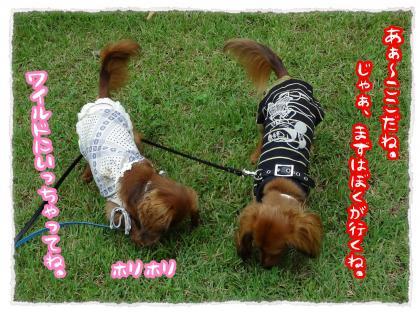 2012_7_22_6_convert_20120722224212.jpg