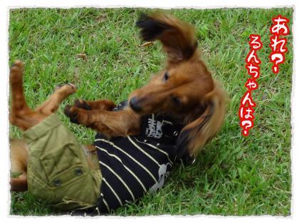 2012_7_22_8_convert_20120722224259.jpg
