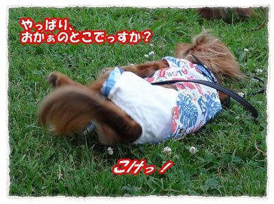 2012_7_24_6.jpg