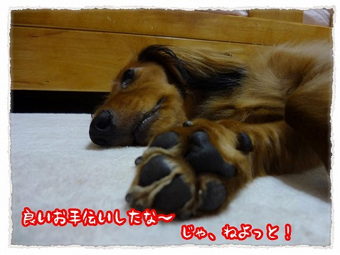 2012_7_25_3.jpg