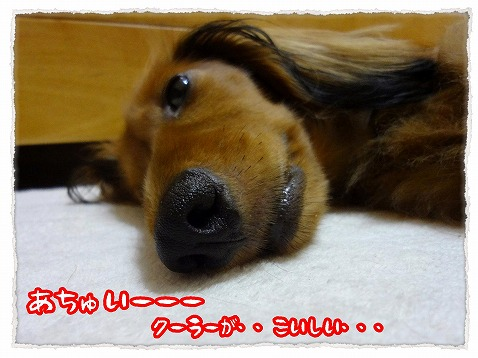 2012_7_26_1.jpg