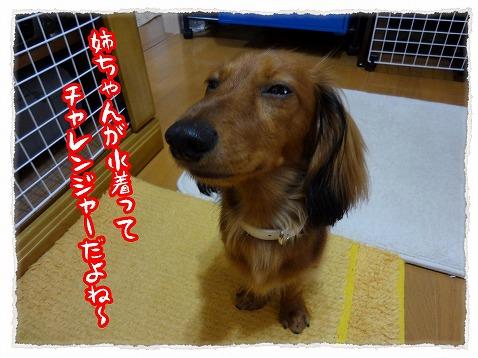 2012_7_26_2.jpg