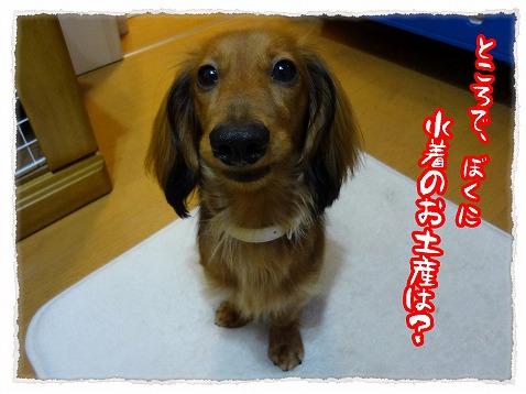 2012_7_26_3.jpg