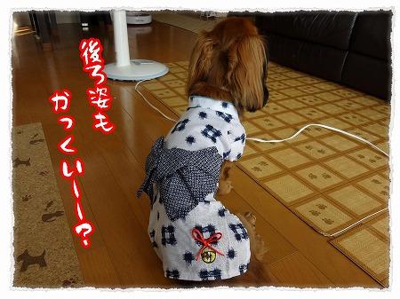 2012_7_28_2.jpg