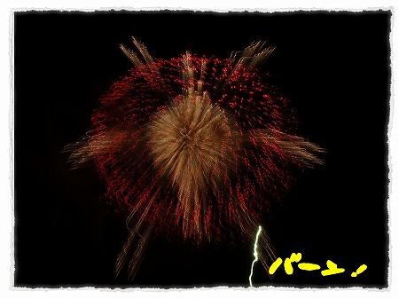 2012_7_28_6.jpg