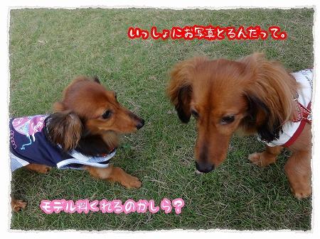 2012_7_29_4.jpg