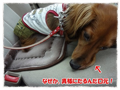 2012_7_30_6.jpg