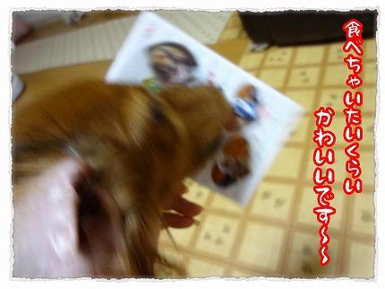 2012_7_31_4.jpg