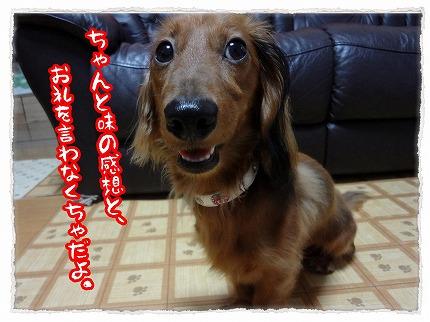 2012_7_31_6.jpg