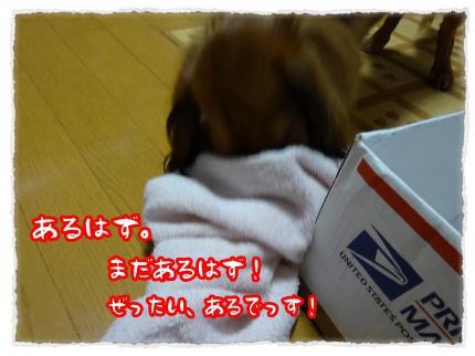 2012_7_4_2_convert_20120704233600.jpg