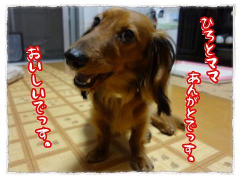 2012_7_5_2_convert_20120705231054.jpg