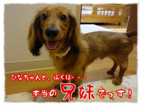 2012_7_9_4_convert_20120709232645.jpg