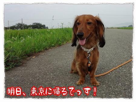 2012_8_14_1.jpg