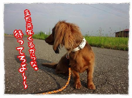2012_8_14_2.jpg