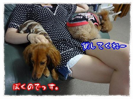 2012_8_14_5.jpg