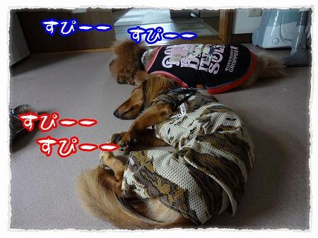 2012_8_14_9.jpg