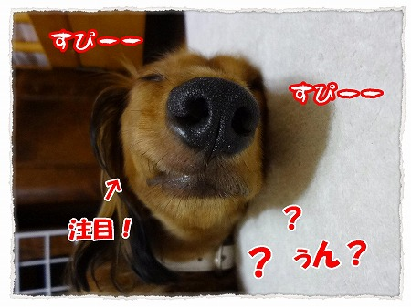 2012_8_1_7.jpg