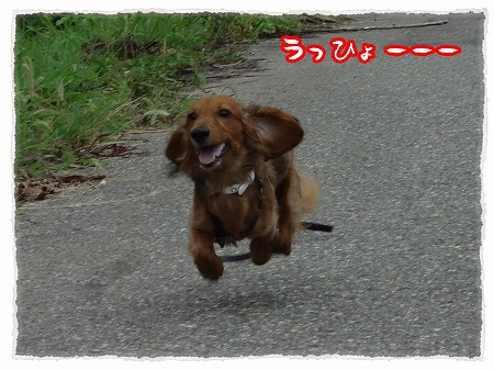 2012_8_21_1.jpg