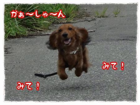 2012_8_21_4.jpg