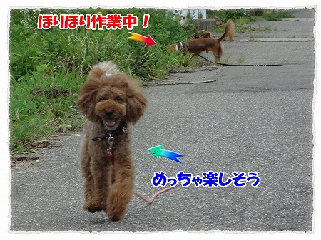 2012_8_21_6.jpg