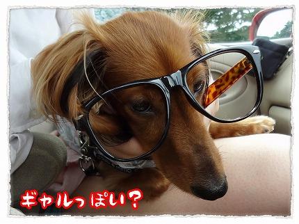 2012_8_23_1.jpg