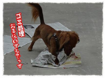 2012_8_23_2.jpg