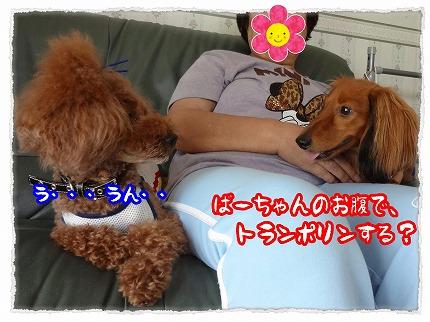 2012_8_23_6.jpg