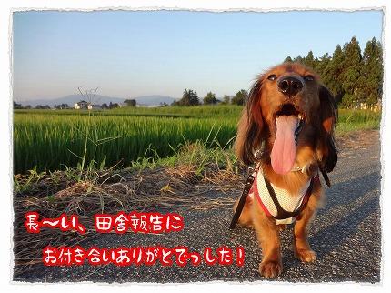 2012_8_23_9.jpg