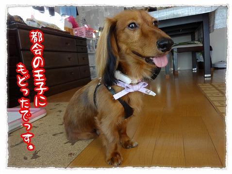2012_8_24_1.jpg