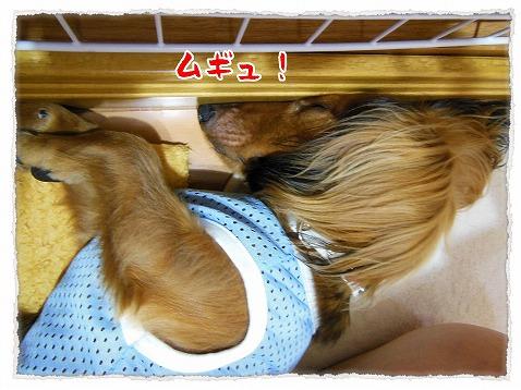 2012_8_25_2.jpg