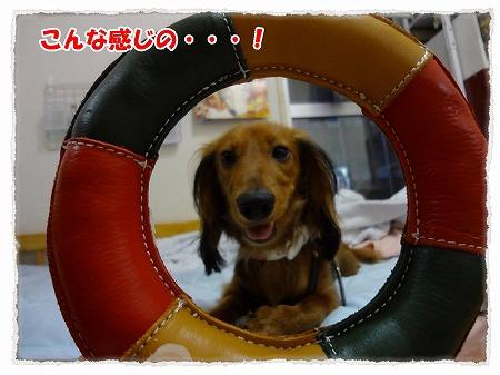 2012_8_26_1.jpg