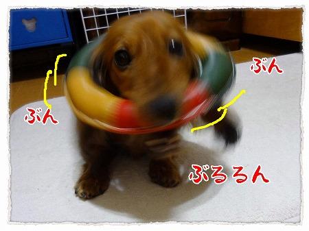 2012_8_26_3.jpg