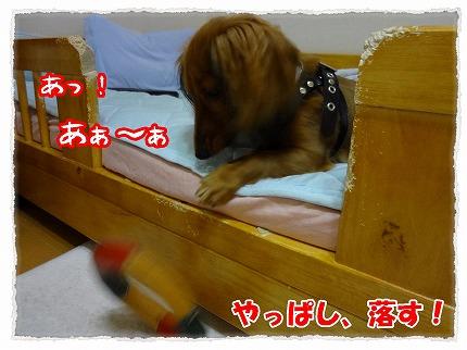 2012_8_27_4.jpg