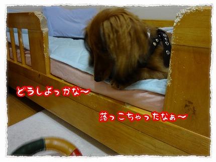 2012_8_27_5.jpg