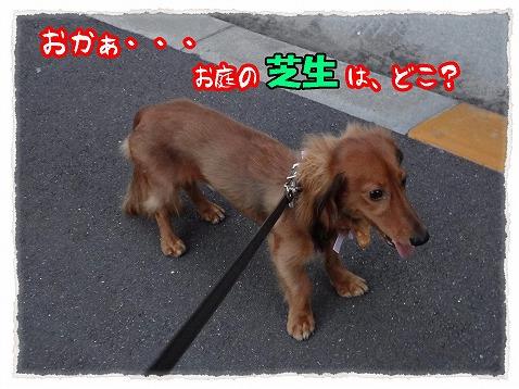 2012_8_29_1.jpg