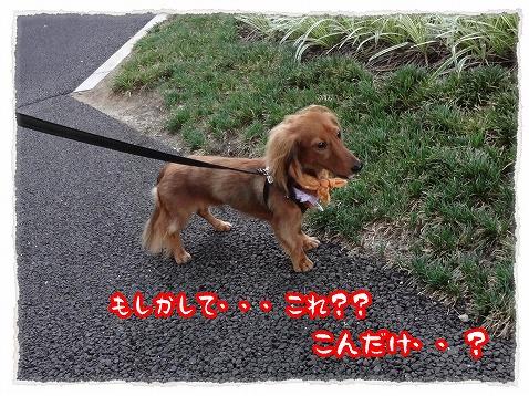 2012_8_29_2.jpg
