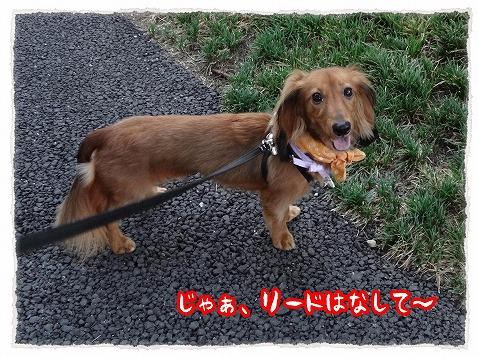 2012_8_29_3.jpg