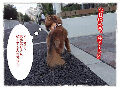2012_8_29_5.jpg