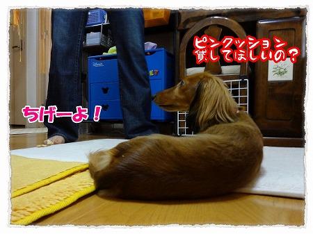 2012_8_2_2.jpg