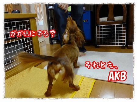 2012_8_2_3.jpg