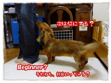 2012_8_2_6.jpg