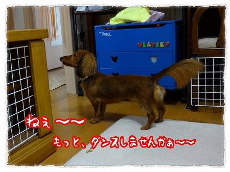 2012_8_2_7.jpg
