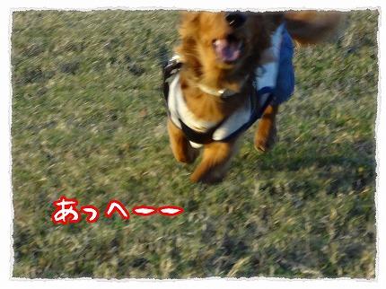 2012_8_30_4.jpg
