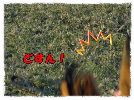 2012_8_30_5.jpg