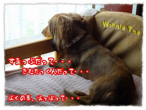 2012_8_31_2.jpg